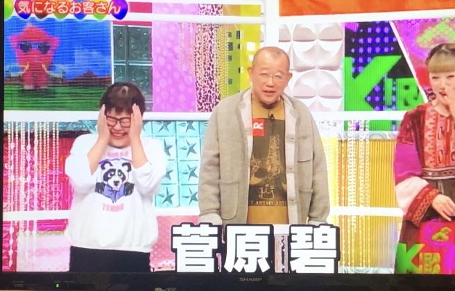 菅原碧がきらきらアフロに出演